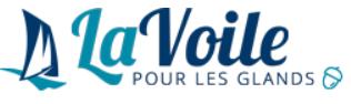 Logo La Voile pour les nuls